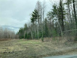 Terre à vendre à L'Isle-aux-Allumettes, Outaouais, Chemin du 5e Rang, 15645054 - Centris.ca