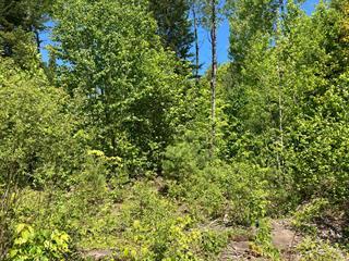 Terre à vendre à Notre-Dame-du-Laus, Laurentides, Chemin des Cèdres, 13657956 - Centris.ca