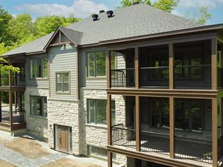 Condo for sale in Orford, Estrie, 193, Rue de la Grande-Coulée, 22930390 - Centris.ca