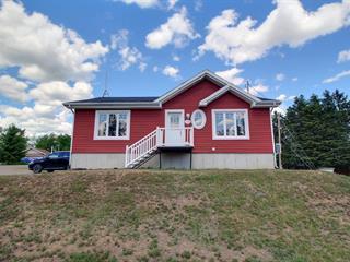 Maison à vendre à Saint-Gabriel-de-Brandon, Lanaudière, 150, 9e rue du Domaine-Bruneau, 25972897 - Centris.ca