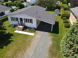 House for sale in Saint-Léonard-d'Aston, Centre-du-Québec, 43, Rue  Caya, 18676509 - Centris.ca