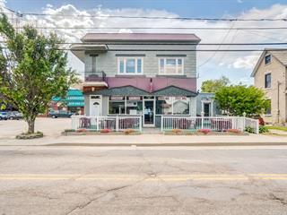Commercial building for sale in Chénéville, Outaouais, 58 - 60, Rue  Principale, 14943232 - Centris.ca