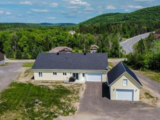 House for sale in Ripon, Outaouais, 30, Chemin des Fougères, 16507017 - Centris.ca