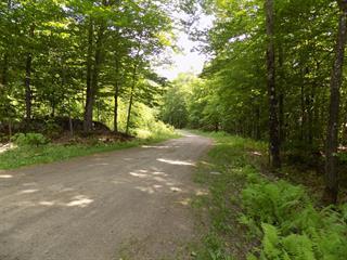 Terrain à vendre à Harrington, Laurentides, Chemin  Shangrila, 22628216 - Centris.ca