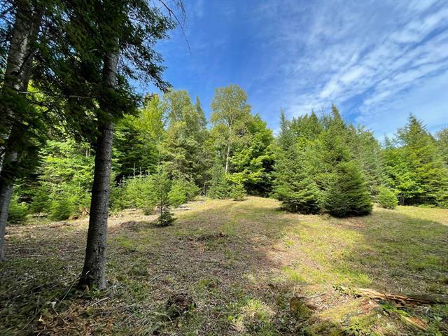 Terrain à vendre à Morin-Heights, Laurentides, Chemin  Bélisle, 12782927 - Centris.ca