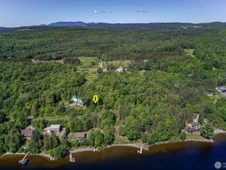 Terrain à vendre à Piopolis, Estrie, Chemin du Lac, 20382863 - Centris.ca