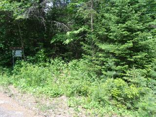 Land for sale in Saint-Alphonse-Rodriguez, Lanaudière, 4e Rang, 12900007 - Centris.ca