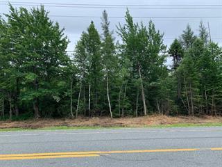Terrain à vendre à Stratford, Estrie, Route  161, 21634904 - Centris.ca