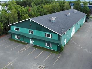 Commercial building for sale in Victoriaville, Centre-du-Québec, 815, Rue de l'Artisan, 28923996 - Centris.ca