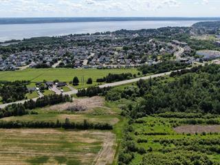 Terrain à vendre à Donnacona, Capitale-Nationale, Route  138, 11775921 - Centris.ca