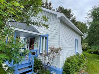 House for sale in Amherst, Laurentides, 166, Rue  Thomas, 10887025 - Centris.ca