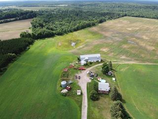 Farm for sale in Mansfield-et-Pontefract, Outaouais, 358, Chemin de la Chute, 12219853 - Centris.ca