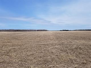 Terre à vendre à Notre-Dame-du-Nord, Abitibi-Témiscamingue, 6e Rang, 25325570 - Centris.ca