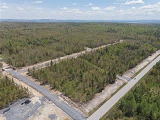 Terrain à vendre à Saint-Denis-de-Brompton, Estrie, 543, Route  249, 22448759 - Centris.ca