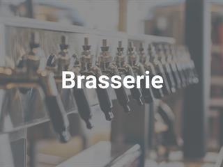 Commerce à vendre à Terrebonne (Terrebonne), Lanaudière, 115, Rue  Saint-Louis, 15047298 - Centris.ca