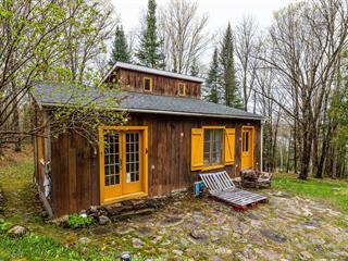 House for sale in La Minerve, Laurentides, 85, Chemin des Mauves, 28303655 - Centris.ca