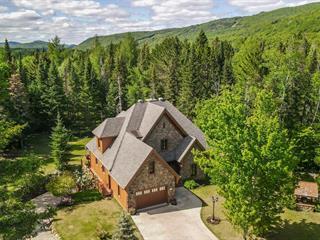 Maison à vendre à Saint-Donat (Lanaudière), Lanaudière, 17, Chemin  Hermina, 28738274 - Centris.ca