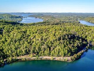 Lot for sale in Lac-Simon, Outaouais, Route  315, 25700744 - Centris.ca