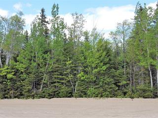 Terrain à vendre à Petite-Rivière-Saint-François, Capitale-Nationale, 53, Chemin des Voitures-d'Eau, 24340435 - Centris.ca