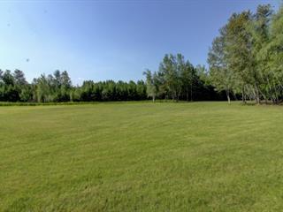 Lot for sale in Princeville, Centre-du-Québec, 1052, 12e Rang Ouest, 16515550 - Centris.ca