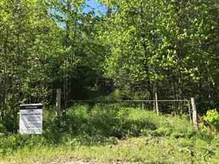 Lot for sale in Mont-Tremblant, Laurentides, Chemin du Poste-des-Grands-Brûlés, 28339960 - Centris.ca