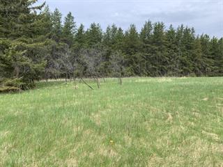 Terrain à vendre à Rouyn-Noranda, Abitibi-Témiscamingue, Rue du Souvenir, 24125402 - Centris.ca