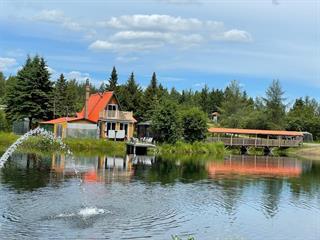 Maison à vendre à La Patrie, Estrie, 85, Route  212 Ouest, 9311781 - Centris.ca