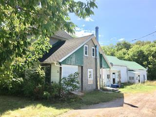 Maison à vendre à Fort-Coulonge, Outaouais, 5A - 5B, Chemin du Bord-de-l'Eau, 23475125 - Centris.ca