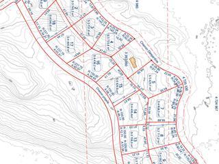 Terrain à vendre à Notre-Dame-du-Laus, Laurentides, Chemin  Desjardins, 18980921 - Centris.ca