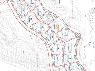 Lot for sale in Notre-Dame-du-Laus, Laurentides, Chemin  Desjardins, 9271299 - Centris.ca