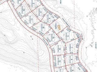 Terrain à vendre à Notre-Dame-du-Laus, Laurentides, Chemin  Desjardins, 22416418 - Centris.ca