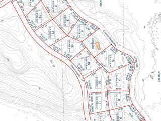 Terrain à vendre à Notre-Dame-du-Laus, Laurentides, Chemin  Desjardins, 21759045 - Centris.ca