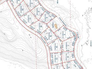 Terrain à vendre à Notre-Dame-du-Laus, Laurentides, Chemin  Desjardins, 17041256 - Centris.ca