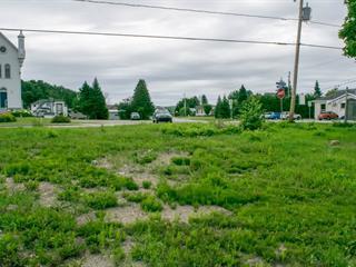 Lot for sale in Notre-Dame-de-la-Salette, Outaouais, 48, Rue des Saules, 12022459 - Centris.ca
