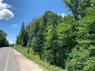Terrain à vendre à Rivière-Rouge, Laurentides, Route  Bellerive, 23952683 - Centris.ca
