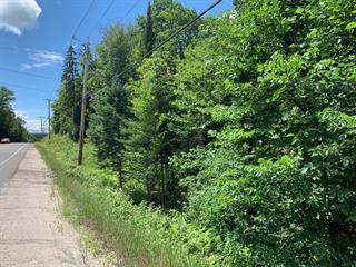 Terrain à vendre à Rivière-Rouge, Laurentides, Route  Bellerive, 13471290 - Centris.ca