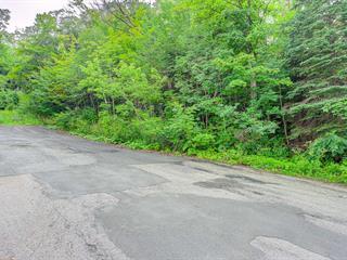 Terrain à vendre à Lévis (Les Chutes-de-la-Chaudière-Est), Chaudière-Appalaches, Rue du Cran, 12800139 - Centris.ca