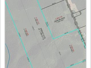 Terre à vendre à L'Ascension-de-Patapédia, Gaspésie/Îles-de-la-Madeleine, Rang du Pin-Rouge Nord, 14250840 - Centris.ca