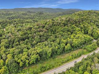 Lot for sale in Morin-Heights, Laurentides, Chemin de Saint-Adolphe, 13669986 - Centris.ca