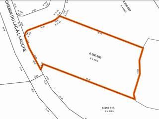 Terrain à vendre à Lac-aux-Sables, Mauricie, Chemin du Lac-à-la-Roche, 11247690 - Centris.ca