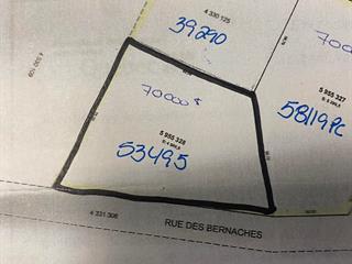 Terrain à vendre à Mont-Laurier, Laurentides, Chemin  Tour-du-Lac-des-Îles, 24734148 - Centris.ca