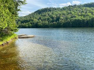 Lot for sale in Lac-Tremblant-Nord, Laurentides, 5936, Rive du Lac-Bibite, 14537068 - Centris.ca