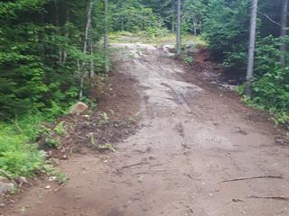 Terrain à vendre à Lac-Saguay, Laurentides, Chemin  Ringuette, 11484302 - Centris.ca