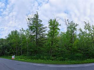 Terrain à vendre à Rigaud, Montérégie, Chemin de la Sève, 14167594 - Centris.ca