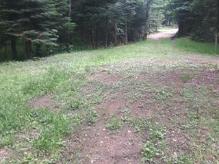 Terrain à vendre à Lac-Saguay, Laurentides, Chemin  Ringuette, 20594674 - Centris.ca