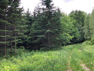 Terrain à vendre à Potton, Estrie, Chemin de l'Étang-Sugar Loaf, 26061753 - Centris.ca