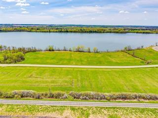 Lot for sale in Papineauville, Outaouais, Chemin  Salomon-Dicaire, 26293745 - Centris.ca