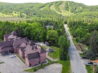 Condo for sale in Sainte-Adèle, Laurentides, 3080, boulevard de Sainte-Adèle, apt. 301, 22654637 - Centris.ca