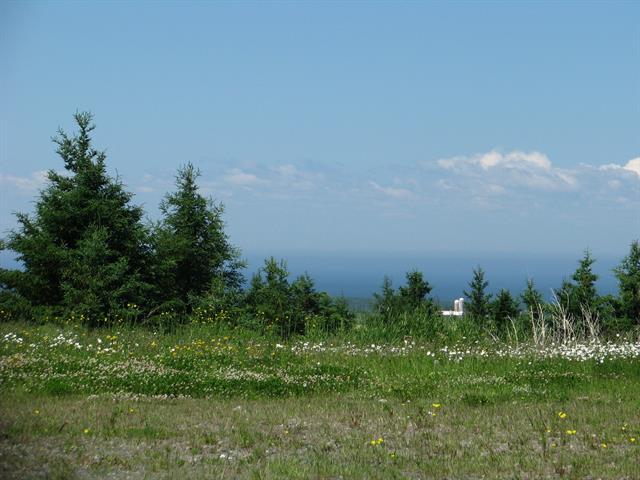 Terrain à vendre à Mont-Joli, Bas-Saint-Laurent, 1416, Avenue du Sanatorium, 13301170 - Centris.ca