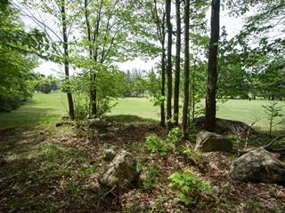 Terrain à vendre à Brownsburg-Chatham, Laurentides, Rue  Binette, 24940052 - Centris.ca